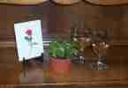 valentinesetting (2)