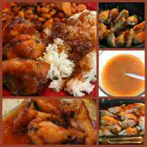 japanese chicken rice sauce