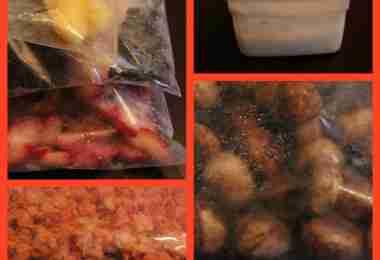 frozen fruit (mangos, blackberries, strawberries, frozen coconut milk, frozen carrots and frozen pretzel bites