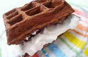 chocolate coconut waffles