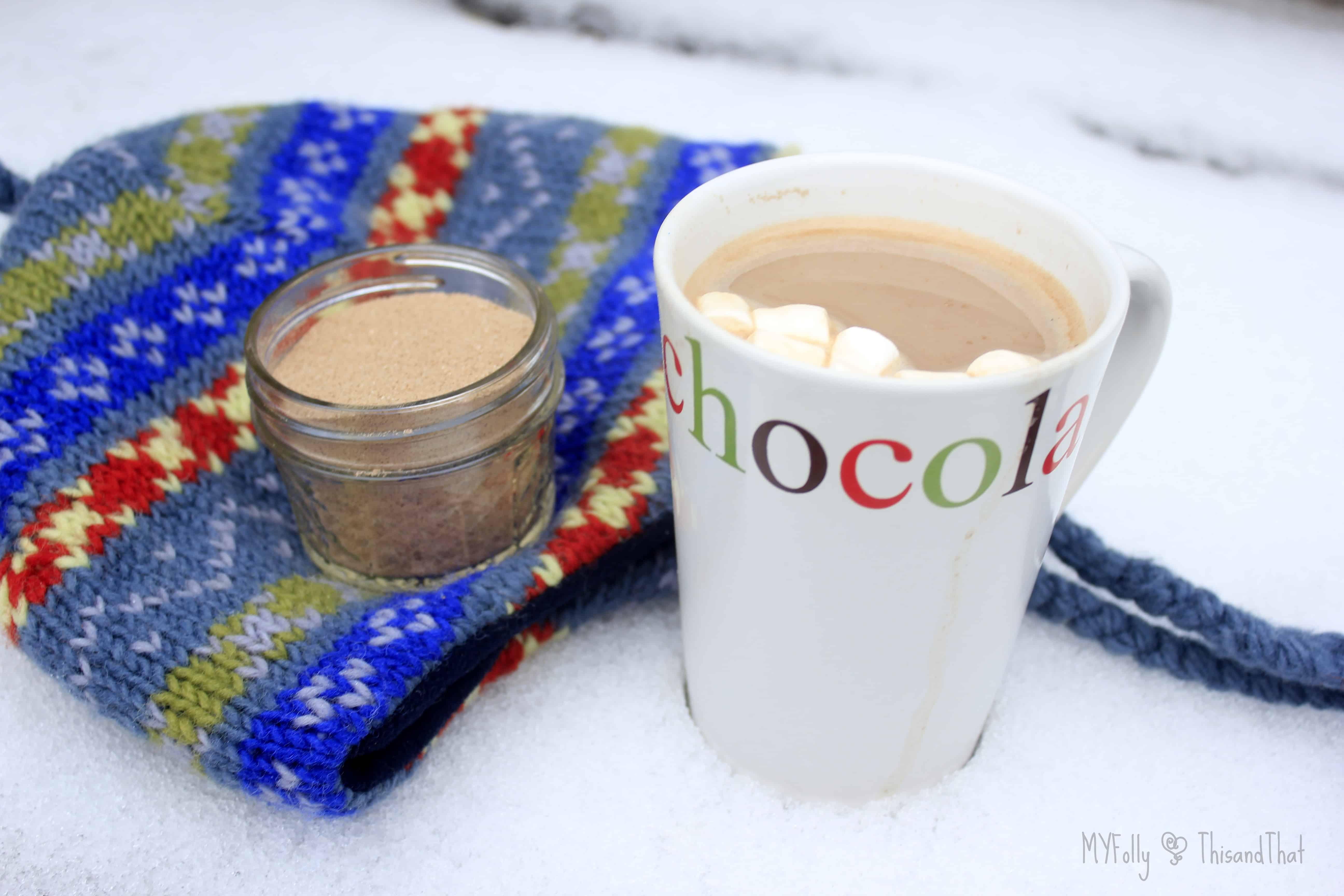 Homemade Hot Chocolate Mix ~ Daily Dish Magazine