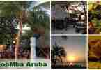 MooMba Beach Bar and Restaurant Aruba