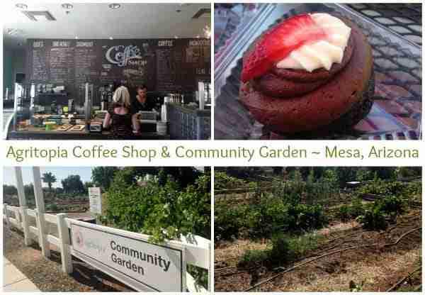 Agritopia Coffee Shop and Community Garden in Mesa, Arizona