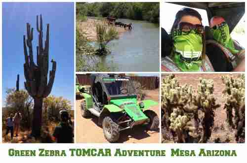 Green Zebra TOMCAR Adventure in Mesa Arizona
