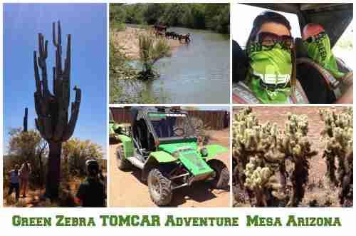 Green Zebra TOMCAR Adventure in Mesa Arizona
