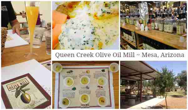 Queen Creek Olive Oil Mill ~ Mesa Arizona