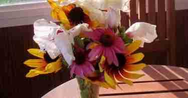 cut flower vase
