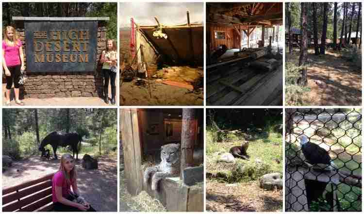 High Desert Museum ~ Central Oregon Travel