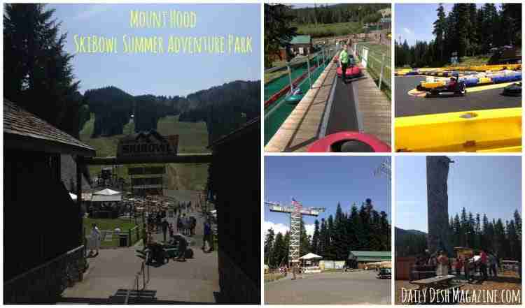 Moun Hood Skibowl Summer Adventure Park ~ Central Oregon Travel