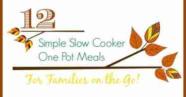 12 Simple Slow Cooker One Pot Meals for Busy Families