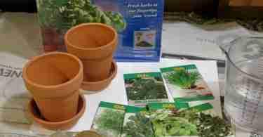 Chia Herb Garden