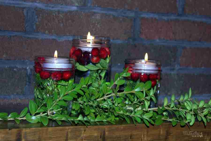Cranberries for Christmas - Decorate with Cranberries/ Daily Dish Magazine