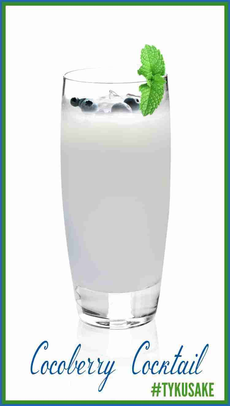 Cocoberry Cocktail
