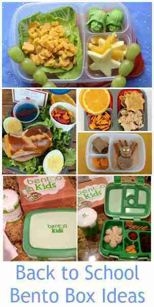 Back to School Bento Box Lunch Ideas