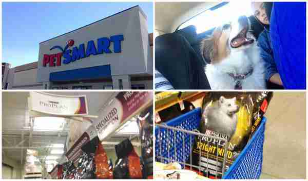 Purina Pro Plan BRIGHT MIND at PetSmart