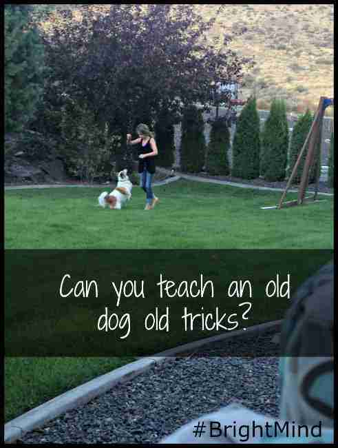 Can you teach an old dog old tricks? #BrightMind