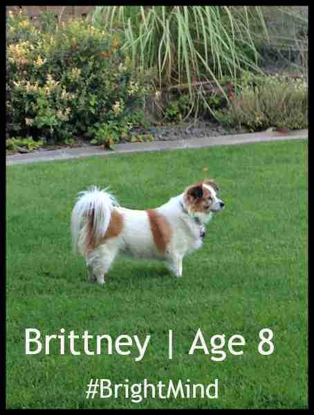 Brittney | Age 8 | #BrightMind