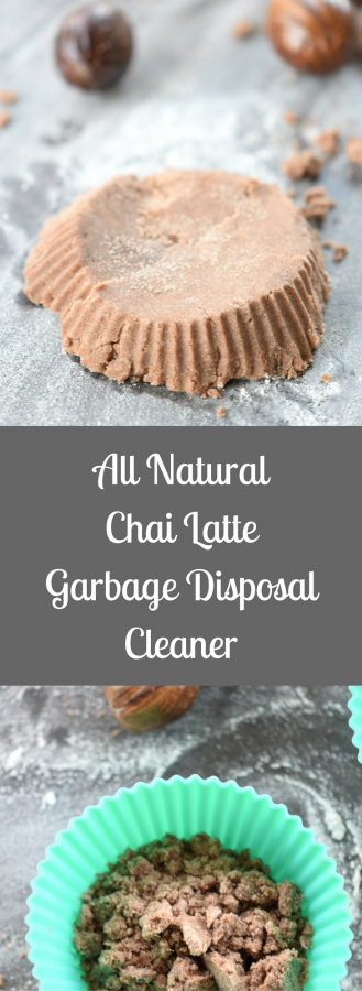 All Natural Chai Latte Homemade Garbage Disposal Cleaner