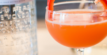 The Red Lady Gin Cocktail   Cinco de Mayo Cocktail Recipe
