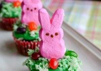 Today's Daily Dish Recipe is Bunny Cupcakes.