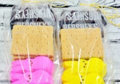 Today's Daily Dish Recipe is Easter Peeps S'mores Gift Bags.