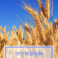 Tips for Dealing with Food Allergies