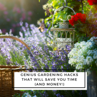 Genius Gardening Hacks That Will Save You Time